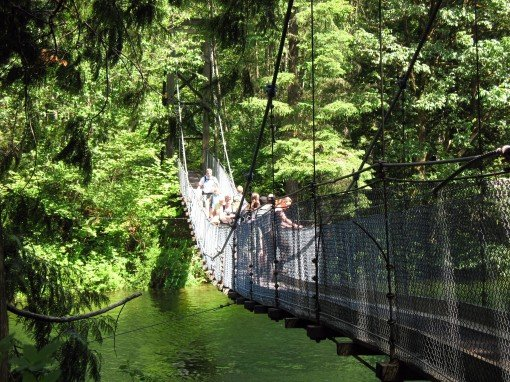 The suspension bridge on the north end of Buntzen Lake.