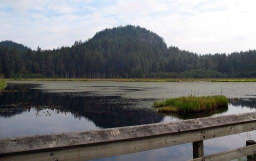 Minnekhada Regional Park marsh and high knoll