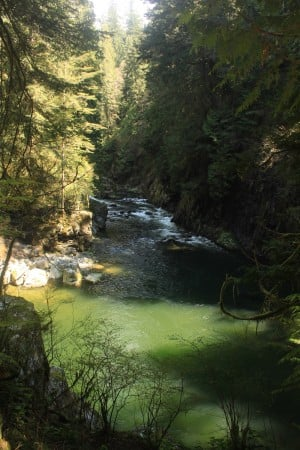 A view of the Capilano River below