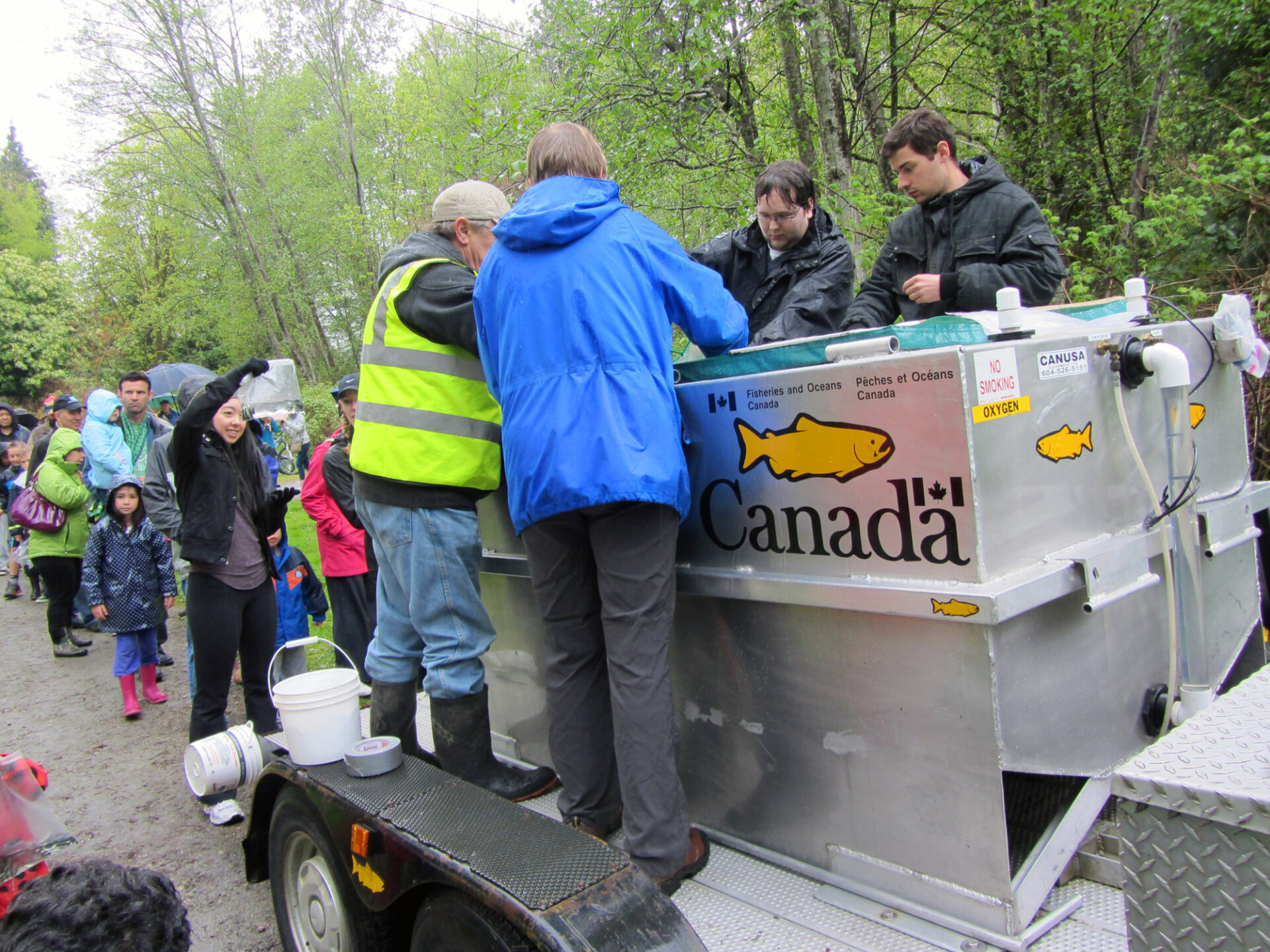 People lineup to release salmon into Eagle Creek in Burnaby