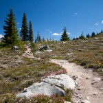 The Harmony Meadows Trail in the Whistler Alpine