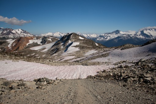 Snow stil remains near the Half Note Trail in Whistler's alpine well into July