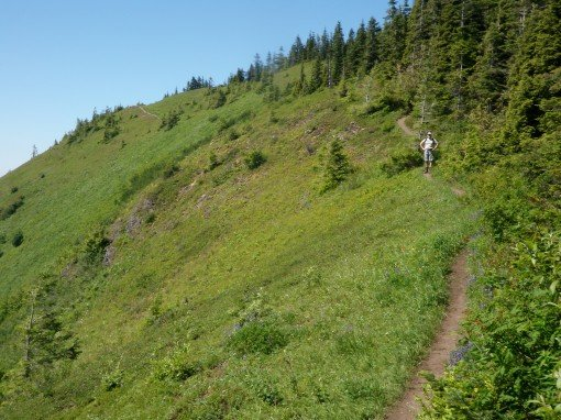 The trail between Elk Mountain and Mount Thurston