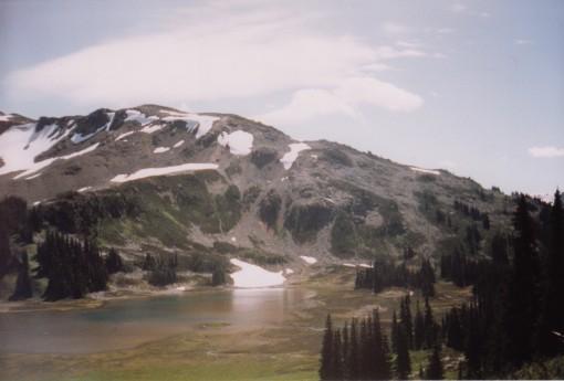 Panorama Ridge from Black Tusk Meadows
