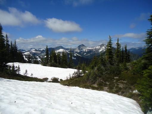 Alpaca, Vicuna and Guanaco peaks from near the summit of Zoa Peak