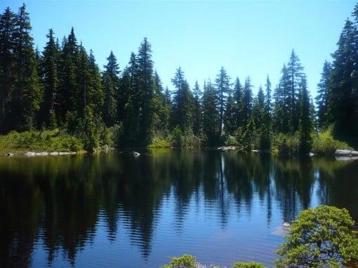 Sam Lake
