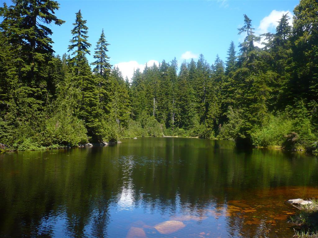 Sam Lake, Theagill Lake, and Cabin Lake on Cypress ...
