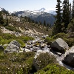 Blackcomb Alpine Hiking Trails