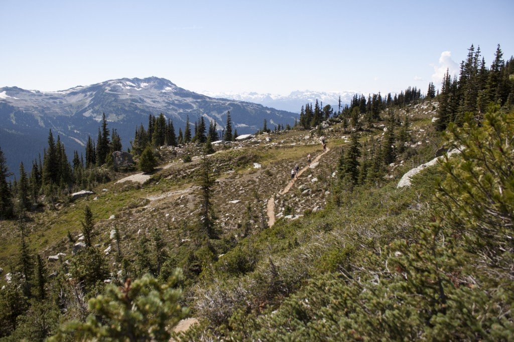 Blackcomb Hiking Trails