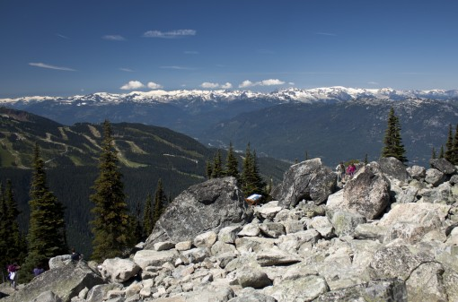 Blackcomb Fitzsimmons Valley Viewpoint