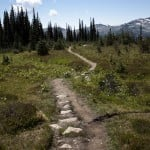 Blackcomb Alpine Hiking Trail