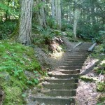 Steps on the 7 Sisters Trail near Cultus Lake