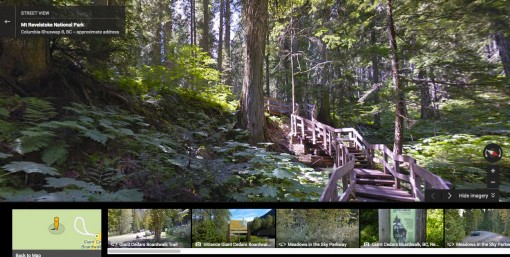 Google Street View of Giant Cedars Boardwalk
