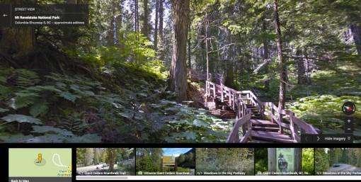 Google Street View of Giant Cedars Boardwalk