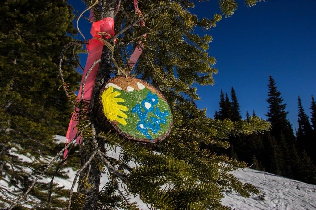 Zoa Peak wooden marker.