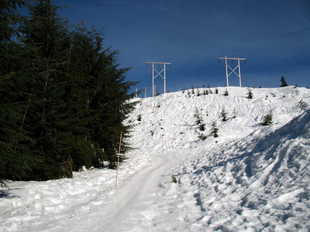 The start of the snowshoe trail to Hollyburn Mountain