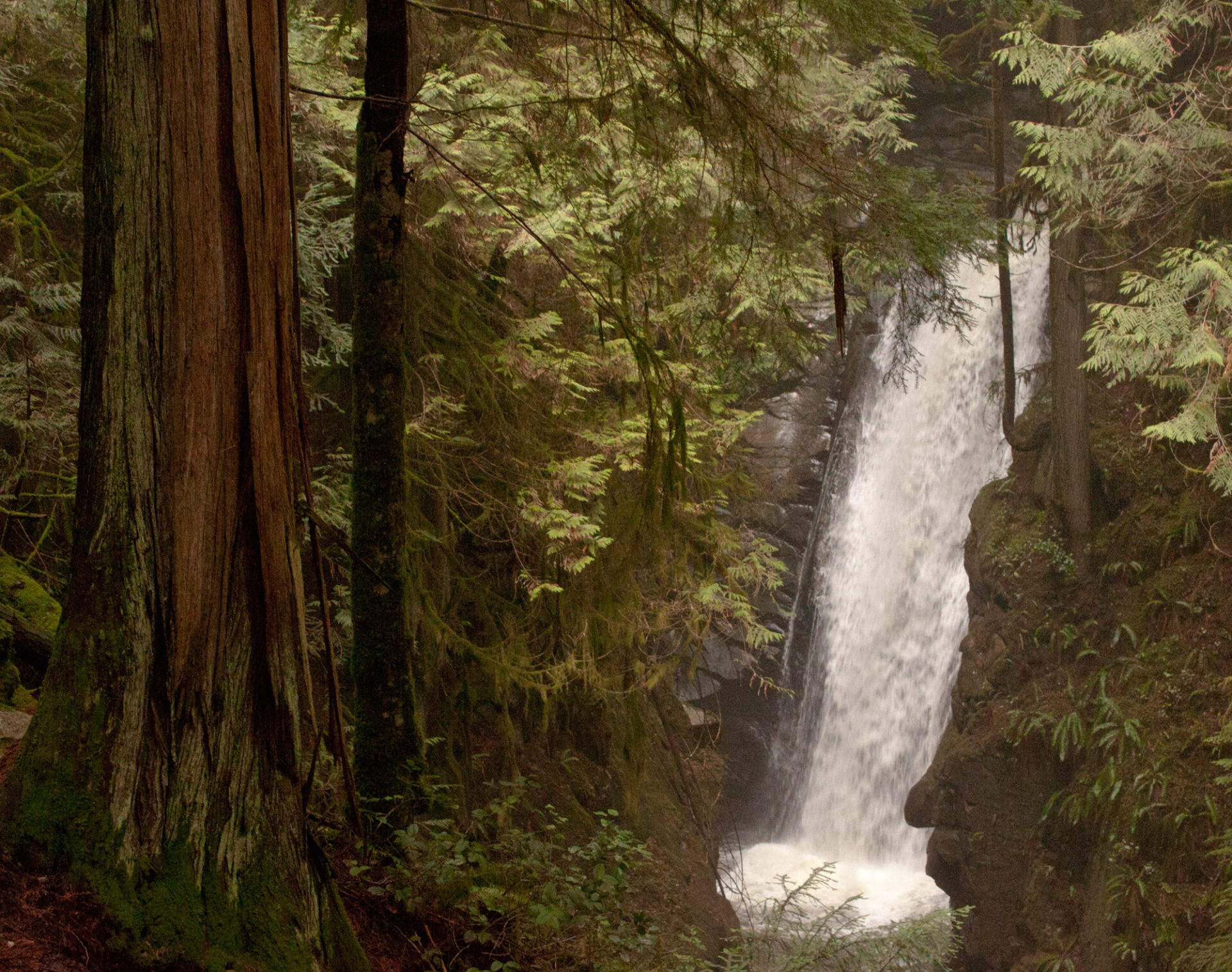 cypress falls best fall hikes in vancouver