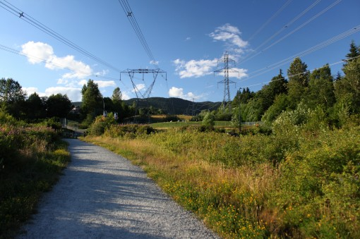The Coquitlam Crunch under the powerlines.