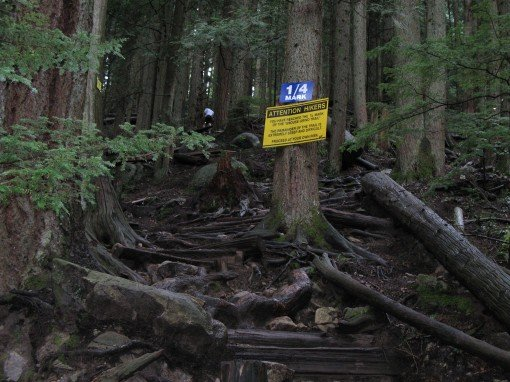 The 1/4 Mark of the Grouse Grind on a rainy day.