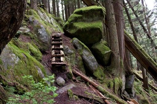 Steep, wooden steps up the Harrison Grind