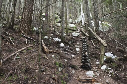 Upper Shannon Falls Trail