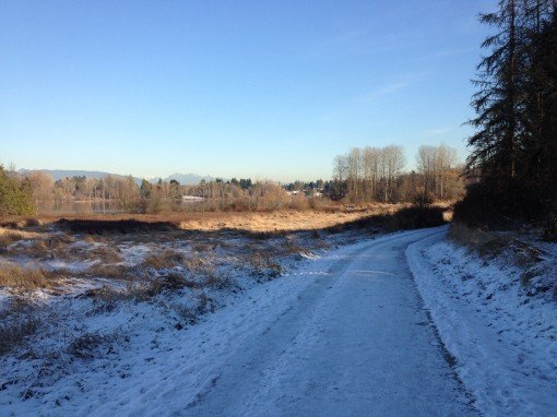 Deer Lake trail on a cold December day