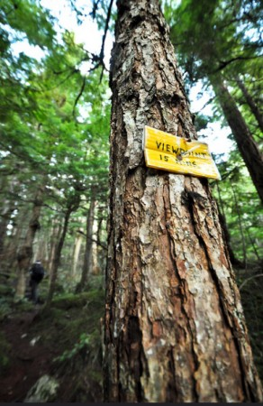 A sign along the Shannon Falls Trail