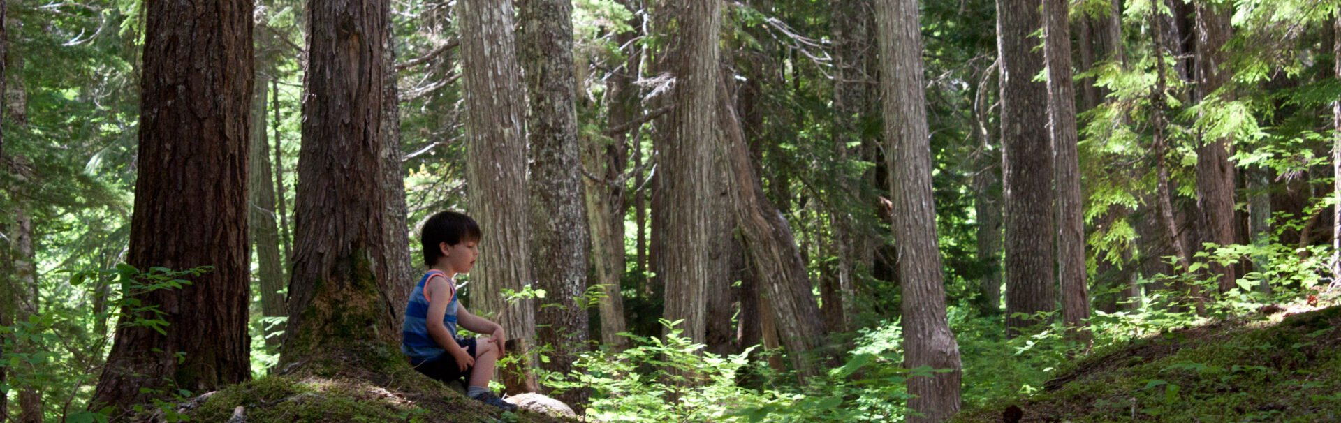 10 Hikes to take your kids on this summer