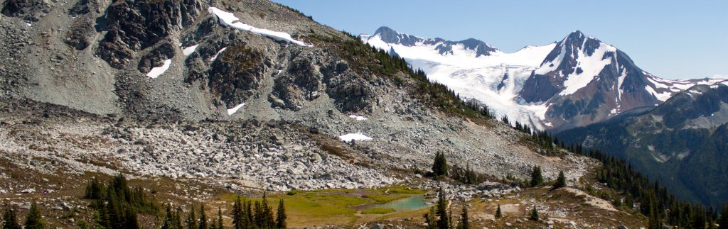 A view of Blackcomb Meadows and the Overlord Trail
