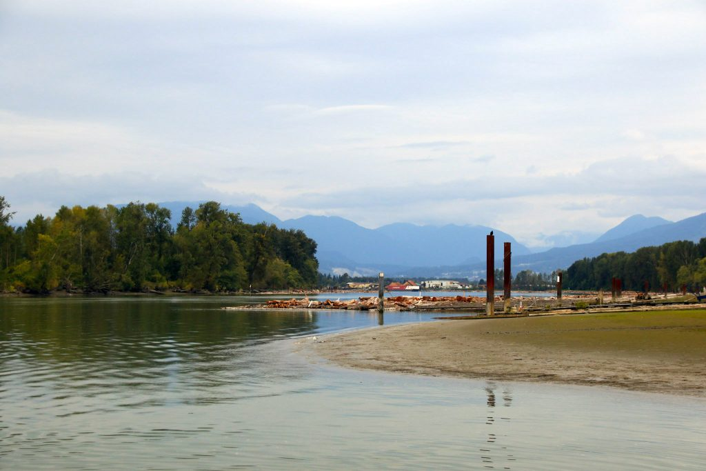 A view of the Fraser River