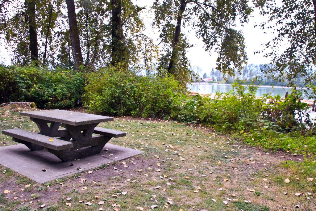 Picnic Tables on Barnston Island