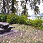 Picnic Tables on Barnston Island