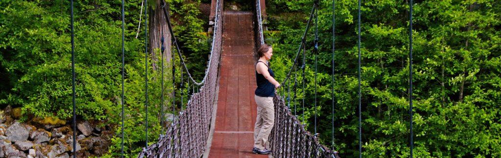 Vancouver Suspension Bridges