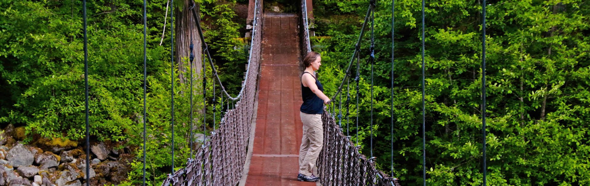Vancouver Suspension Bridges