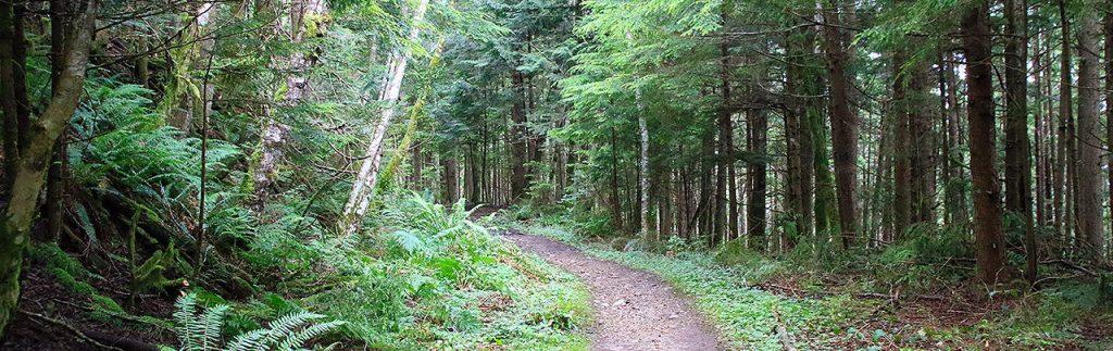 Tunnel Bluffs Trail