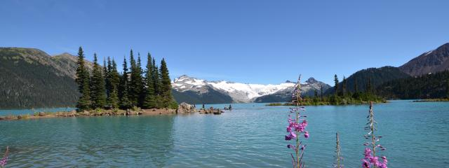 Garibaldi Lake Trail