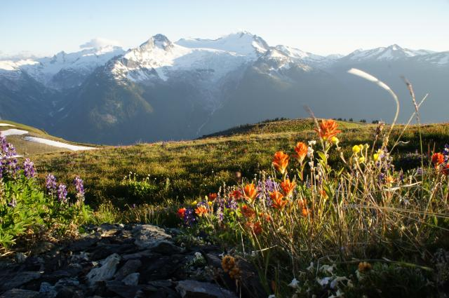 Singing Pass (Russet Lake) (Whistler)