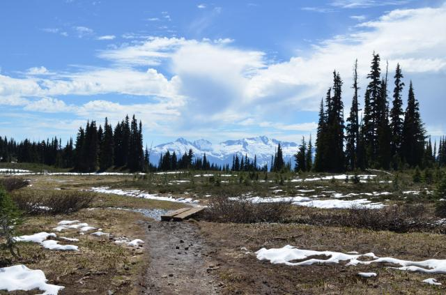 Black Tusk Trail
