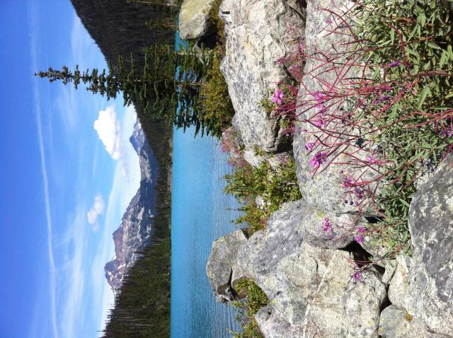 Joffre Upper Lake Hike