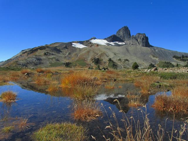Helm Creek/Cinder Flats To Panorama Ridge
