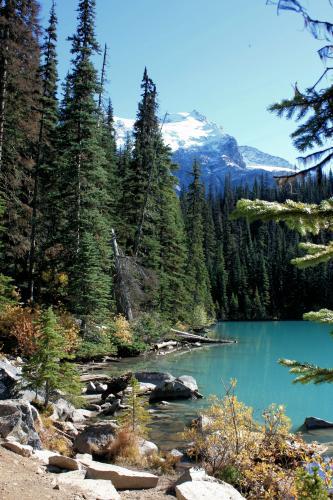 Joffre Lakes Trail Photo Hiking Photo Contest