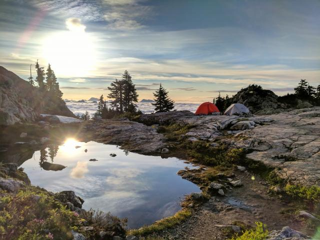 Mount Seymour Peak Trail