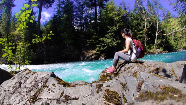 Whistler Interpretive Forest