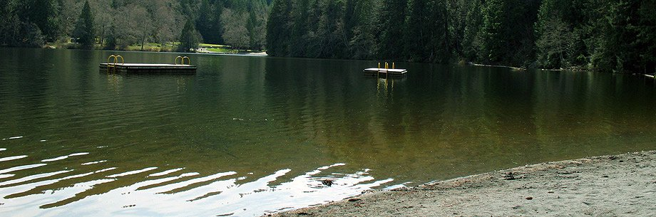 The beach at Alice Lake