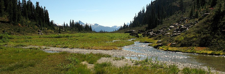 Brandywine Meadows near Whistler, BC