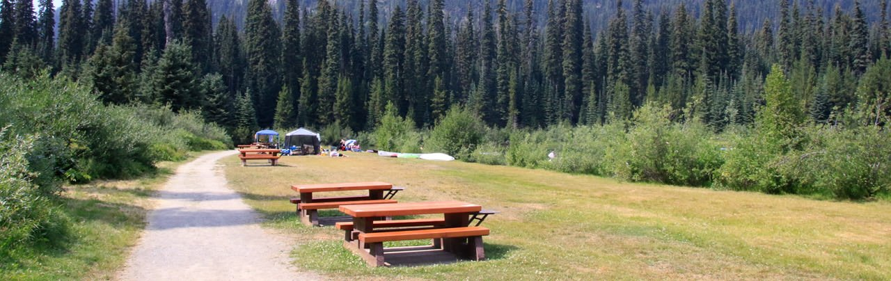 The Spruce Bay Picnic Area