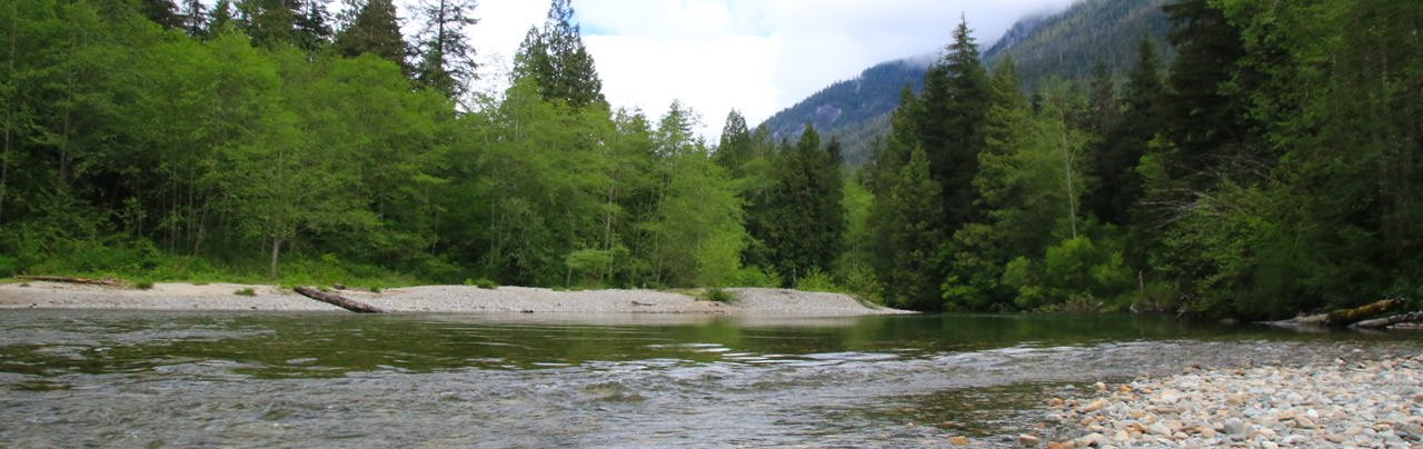 Back-country campsite in Golden Ears Provincial Park