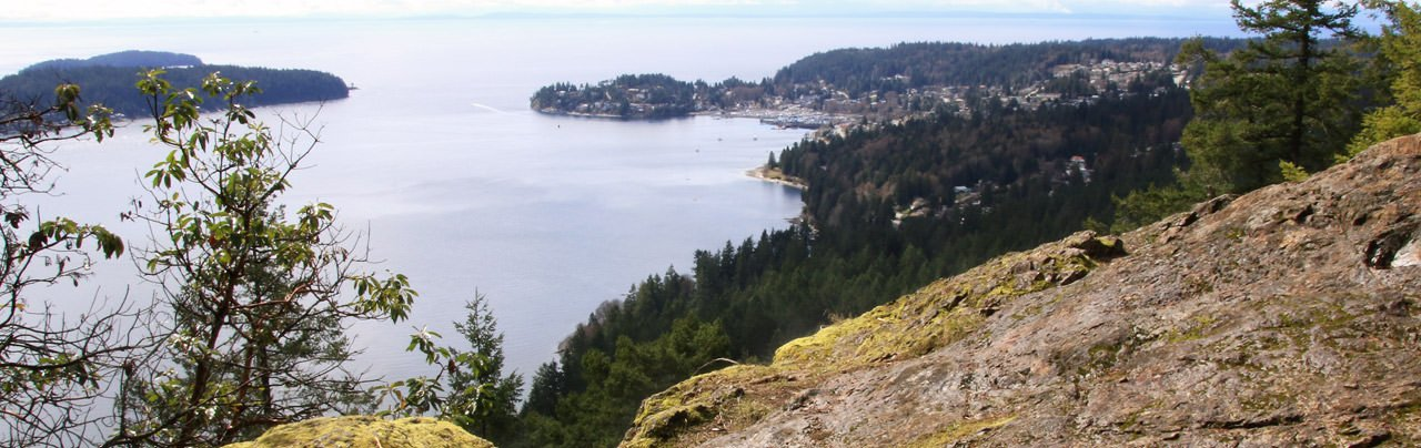 A view of Gibsons from Soames Hill