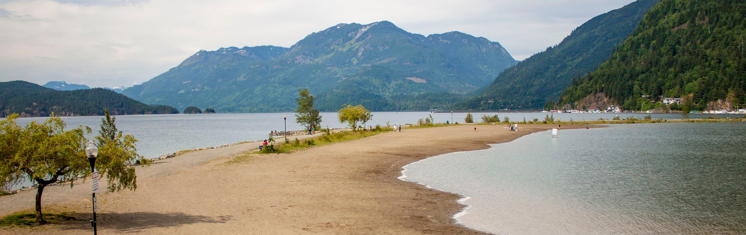 A view of the beach and Harrison Lake