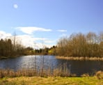 The lake area near near Aldergrove Bowl in Aldergrove Regional Park